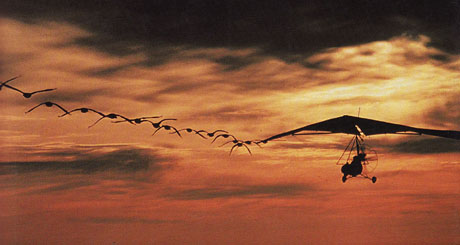 father-goose-cover_web_460x245