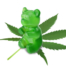gummy bear on cannabis leaf