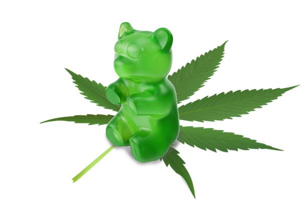 gummy bear on cannabis leaf